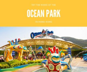 HK Ocean Park Top 10 Things To Do in Hong Kong